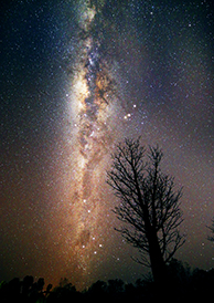 The Milky Way over Litchfield National Park